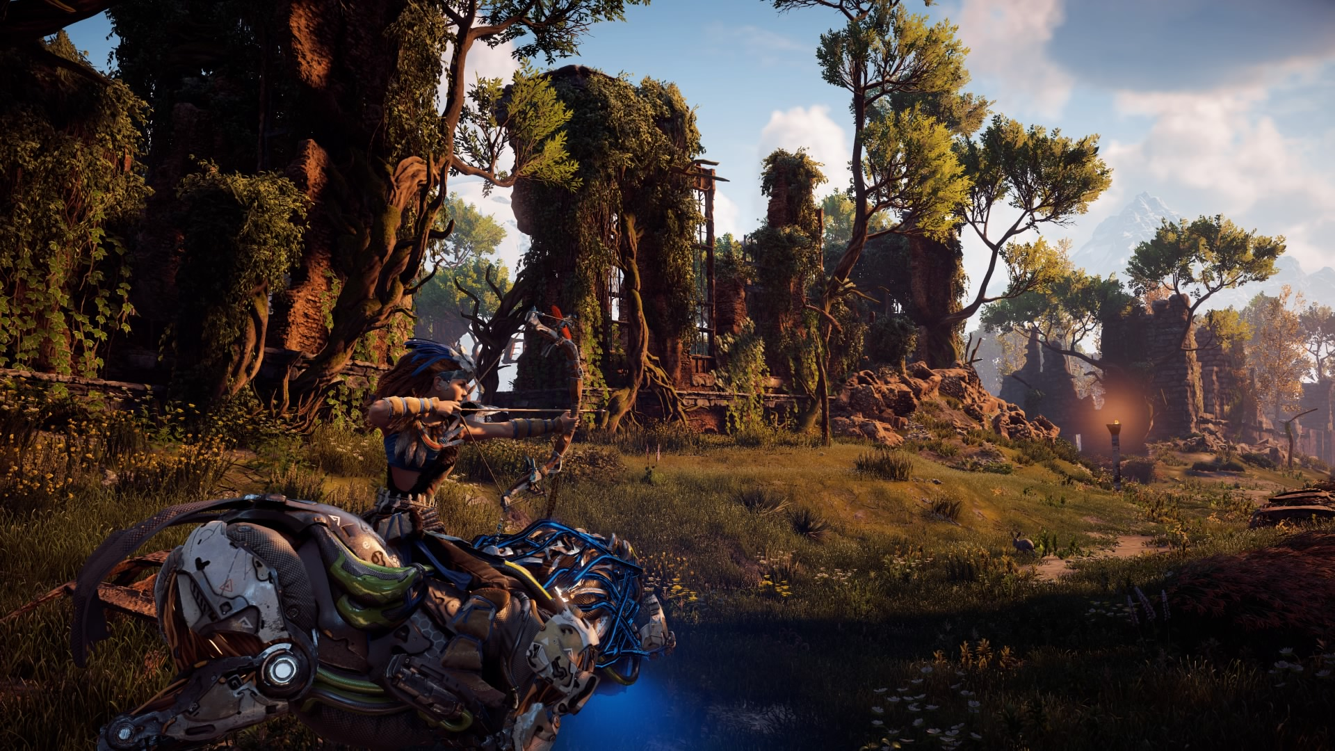 Horizon Zero Dawn™_20170815201844.jpg